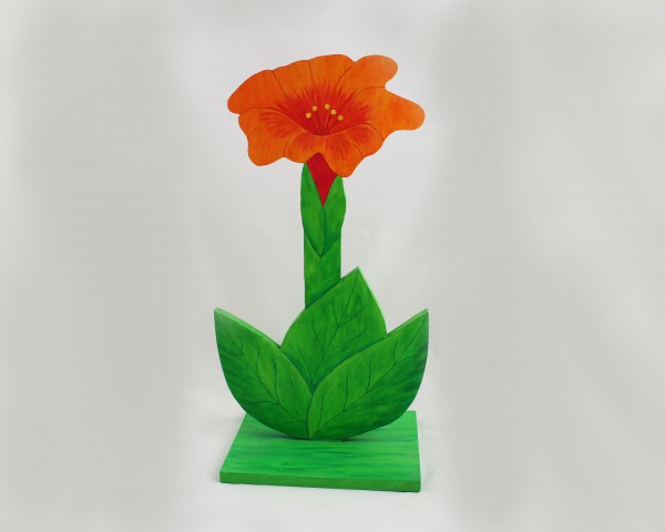 Trichterblume groß
