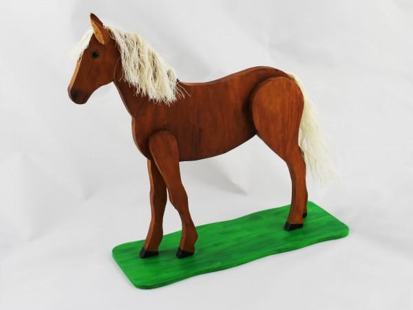 Pferd in versch. Farben